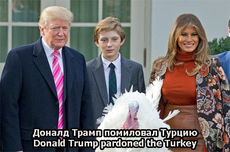Доналд Трамп помиловал Турцию